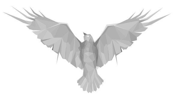 Calgary Graphic Design – Raven
